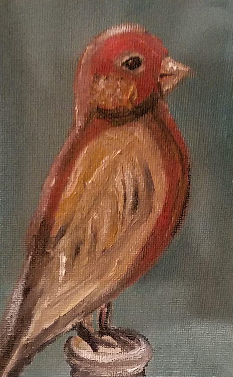 Bottle Bird Ii Barnel S The Art Framing Gallery