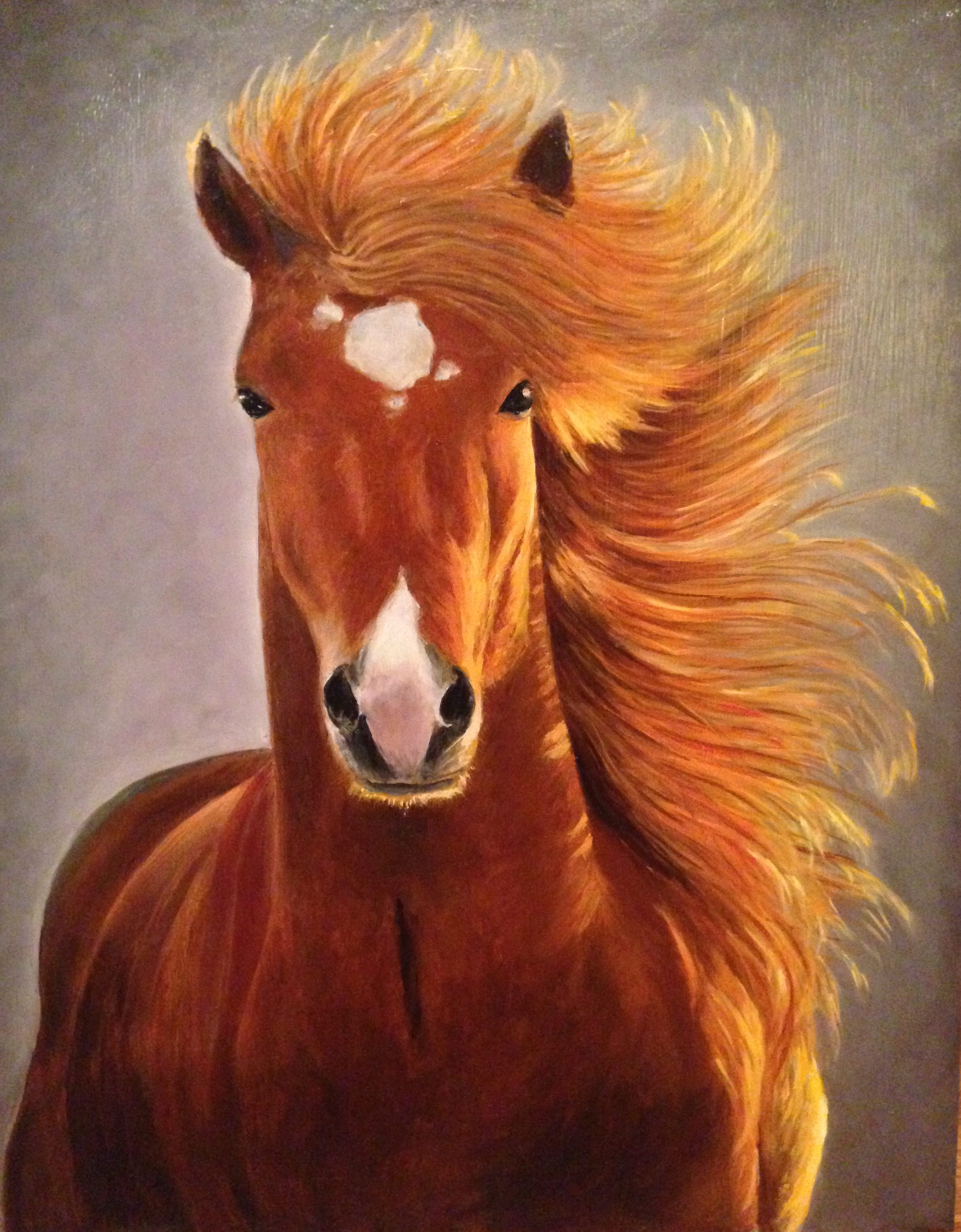 Beautiful Horse Sold Barnel S The Art Framing Gallery
